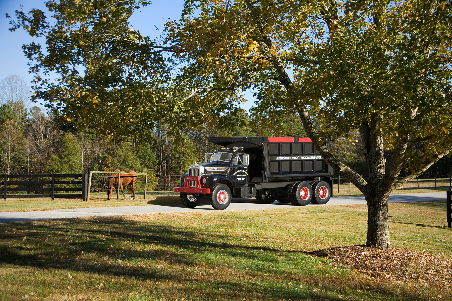 Dumptruck on the farm